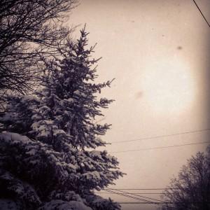 Snowy day in Grand Rapids, MI.
